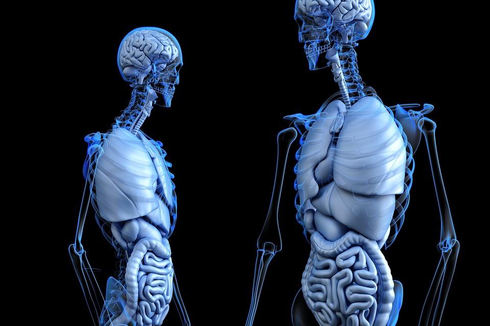 Здоровый вы человек или нет: Простые тесты для проверки здоровья
