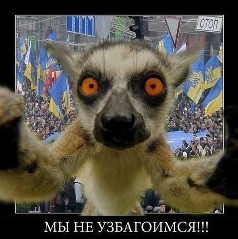 В. Путин заявил, что не позволит Киеву уничтожить политических оппонентов на востоке Украины
