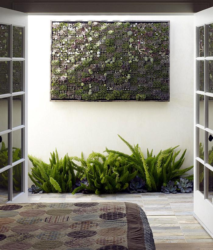 Вертикальное озеленение своими руками в домашних условиях 7