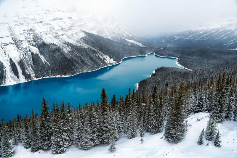 Озеро Пейто, Канада  Северная Америка, путешествие, фотография