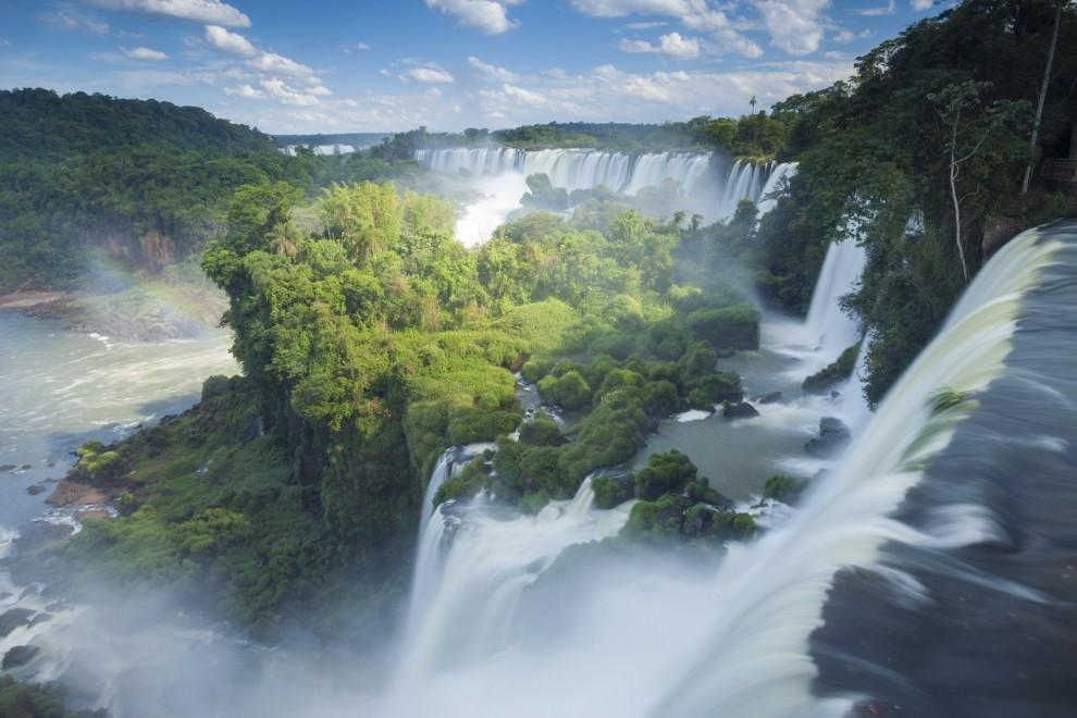 Зеленые легкие планеты: красивейшие леса