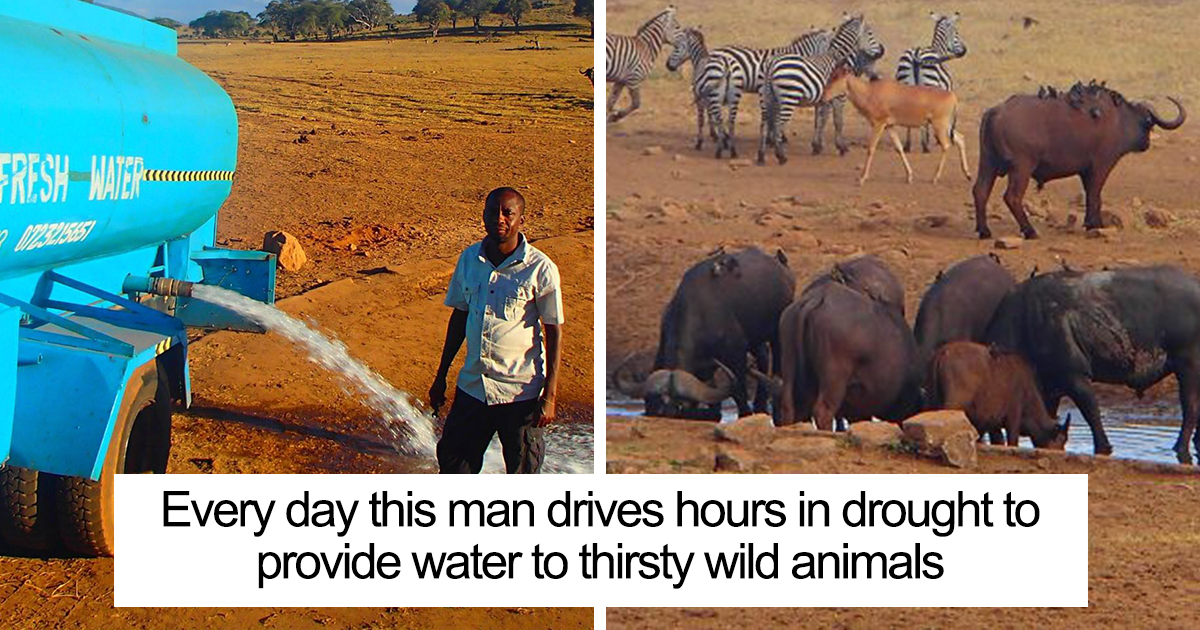 110+ Wholesome Pictures That Prove There's Still Hope For This World
