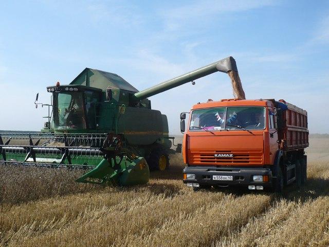 Минсельхоз России: на 8 ноября собрано 136,3 млн тонн зерна