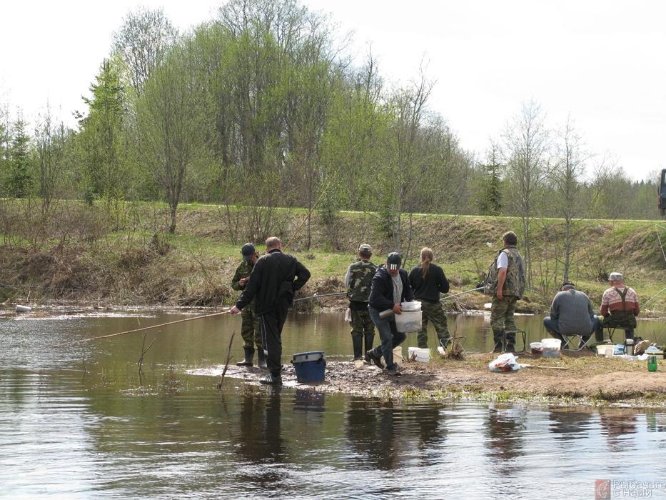 ловля щуки весной на реке истра