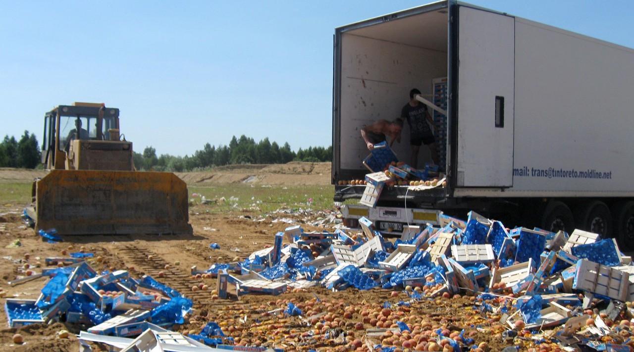 Эмбарго трёхлетней выдержки: как продовольственные санкции России сказались на экономике ЕС