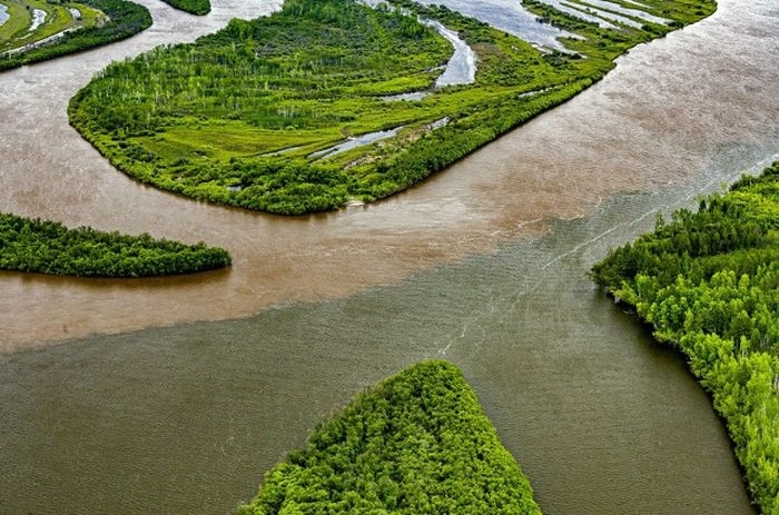 Река образуется слиянием рек Аякит и Сулук на склонах Буреинского хребта, левый приток Амура.
