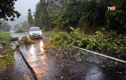 Более 40 поселков остались без электричества после циклона в Хабаровском крае