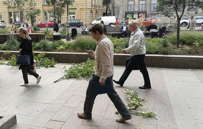 Девять человек пострадали из-за шквалистого ветра в Москве