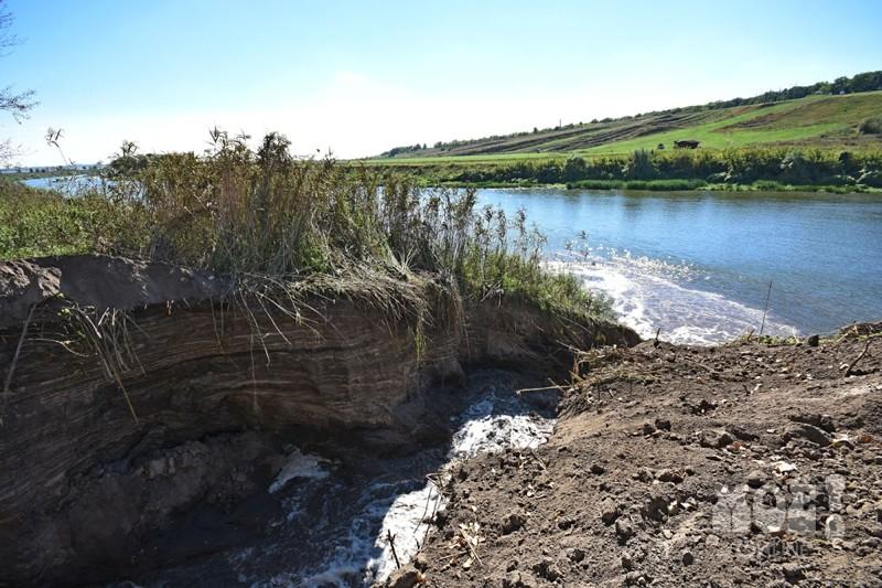 В Воронеже строители за ночь осушили озеро и устроили экологическую катастрофу