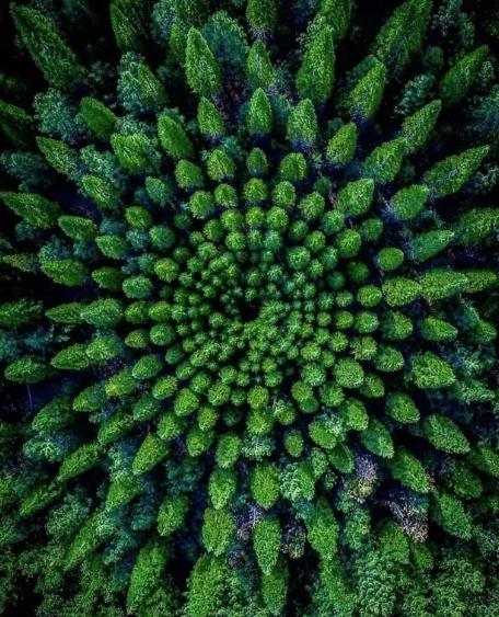 20 отличных снимков природы для тех, кто просто устал