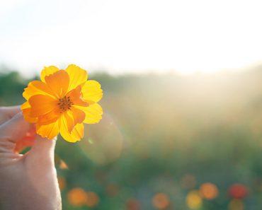 Как правильно начинать свой день: 8 утренних ритуалов счастливых людей.