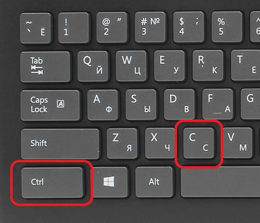 копируем текст с помощью клавиатуры