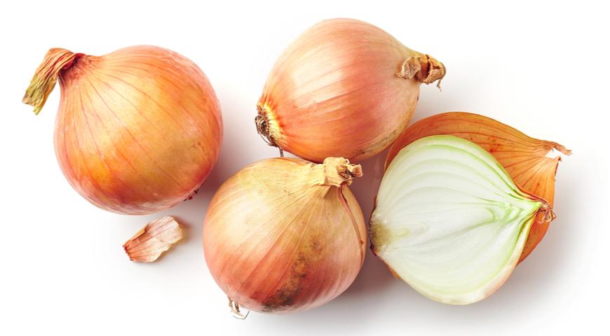 Как готовить репчатый лук: желтый, белый, красный, зеленый и шалот