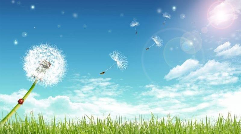 Почему небо голубое: как объ…