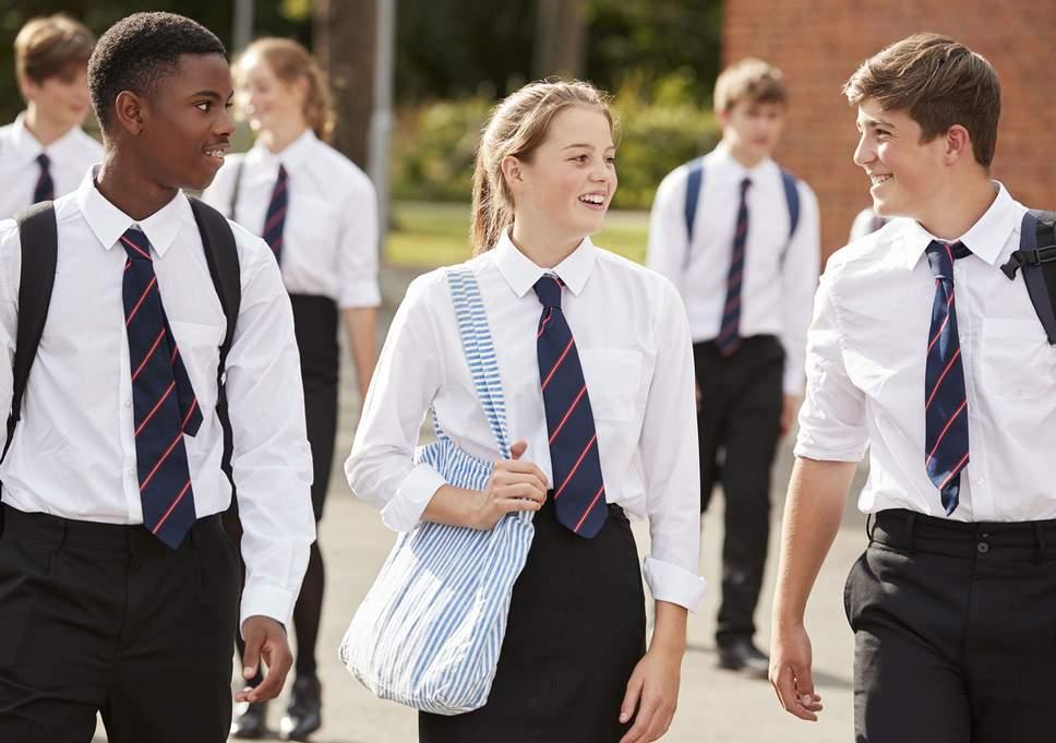 Десятки британских школ запр…
