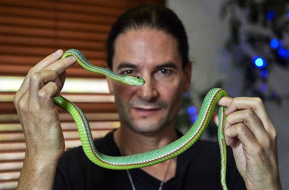 Странное увлечение любителя змеиного яда оказалось полезным для медицины