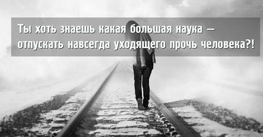 «Если нам суждено распростит…