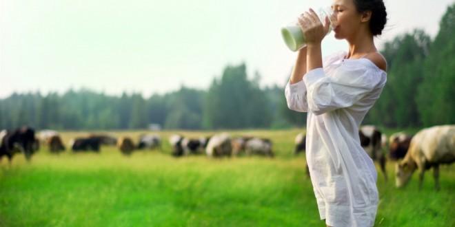 Молоко — применение в лечении и косметике для лица и волос