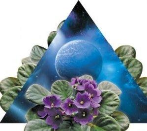 Планеты и домашняя магия растений.