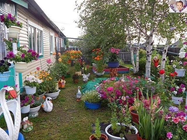Уютный огород своими руками
