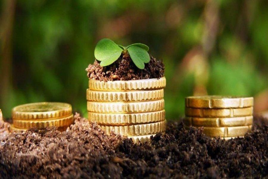 Путин снова призвал поддержать малый и средний бизнес в сельском хозяйстве