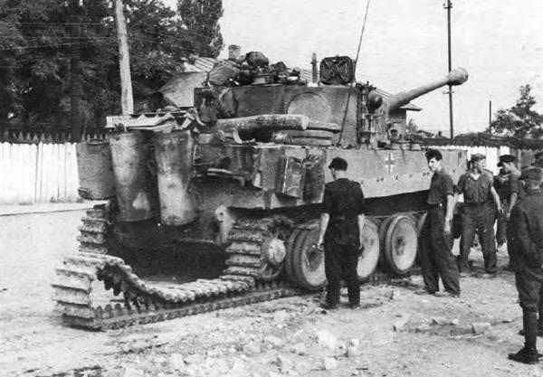 Генерал «Мышь»: как грызуны помогли советским солдатам