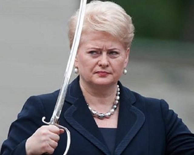 Литву забыли спросить: в РФ …