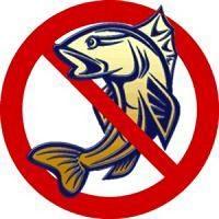 Весенний запрет на ловлю рыбы 2016