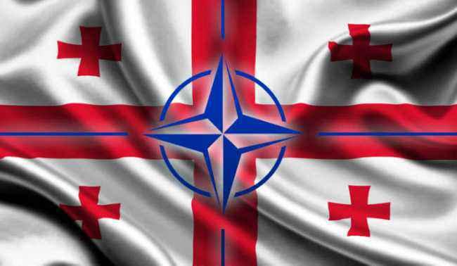 НАТО И ГРУЗИЯ СТРАНА-КАНДИДАТ