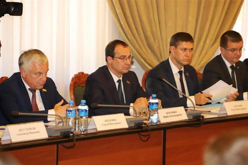 Экономическое развитие Новокубанского района: проблемы и пути решения