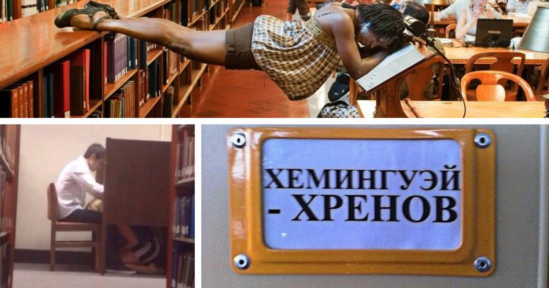 Минутка сумасшедшего библиотечного юмора