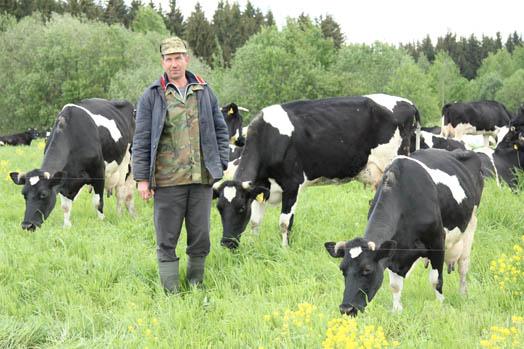 Нехватка внимания со стороны мужа. Ему коровы важнее.