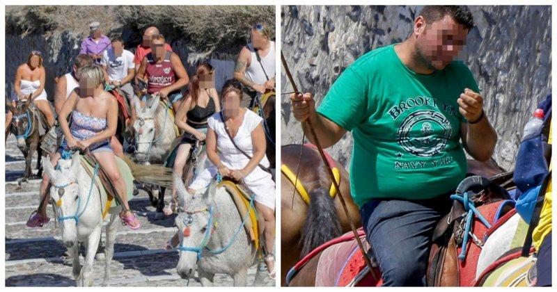Толстым туристам в Греции запретили кататься на ослах