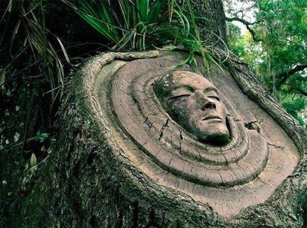 Духи деревьев от скульптора Keith Jennings