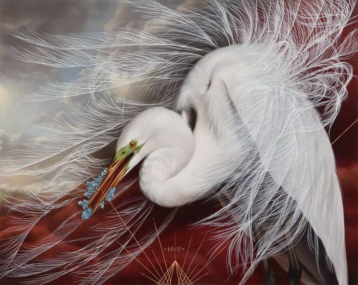 Красивые птицы в картинах Jo…