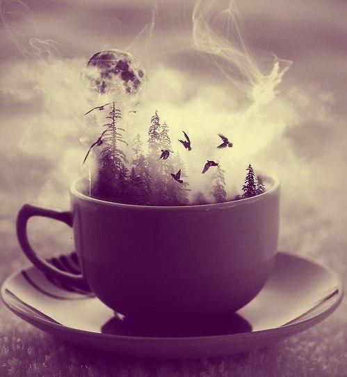 Кофейный сон.