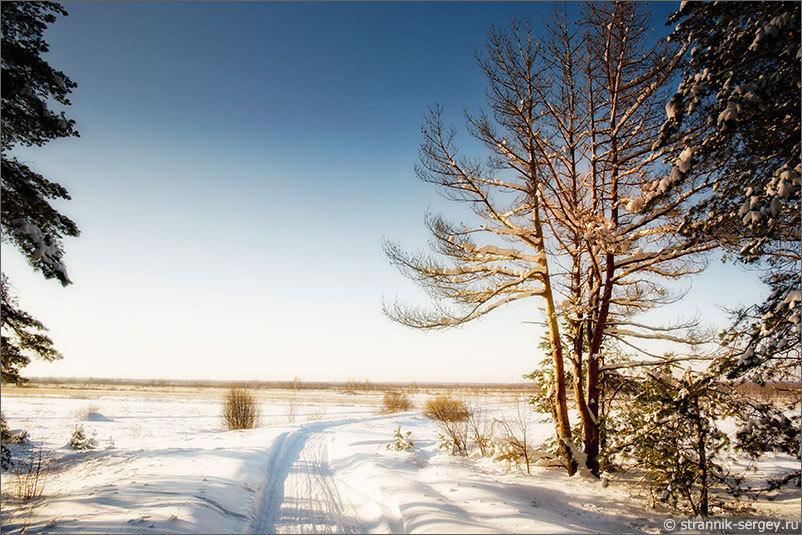 Отправляемся в поход.Зима в Мещёре: хрустальные утра, серебряные дни