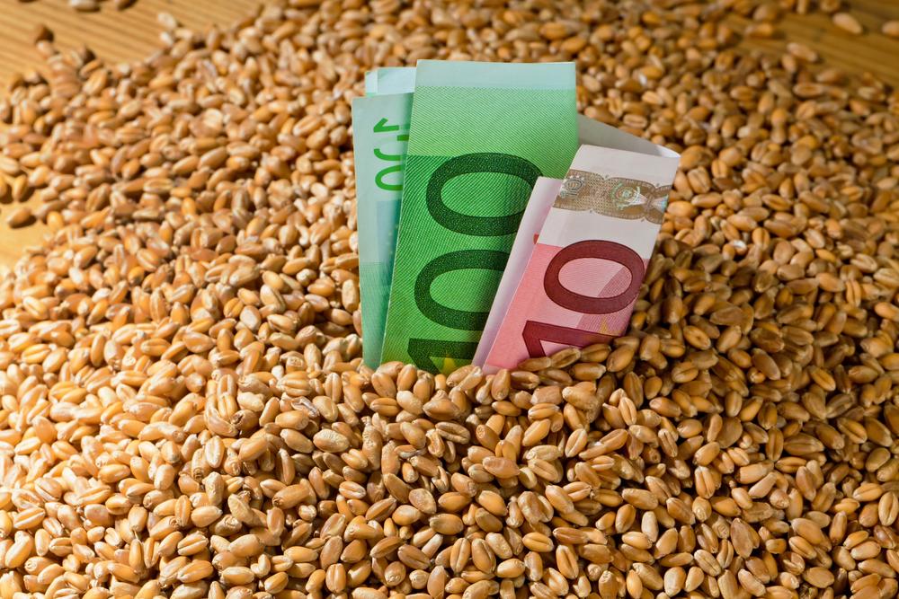 Кто покупает российское зерно?