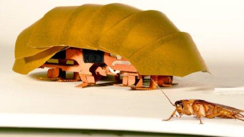 """Робот-таракан, способный """"просачиваться"""" сквозь узкие щели"""