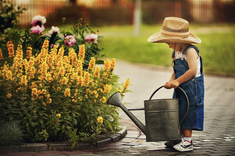 Огородик для детей