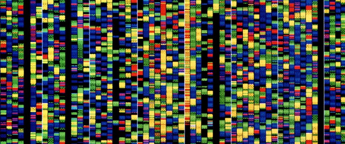 Технология хранения данных на ДНК появится на рынке в 2019 году