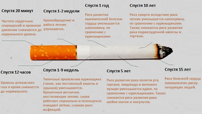 Картинки по запроÑу Что проиÑходит Ñ Ð²Ð°ÑˆÐ¸Ð¼ телом, когда вы броÑаете курить?