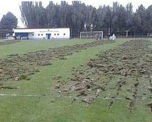 Пьяный фанат вспахал футбольное поле на тракторе