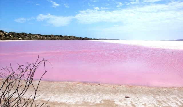 Австралийское озеро Хиллер