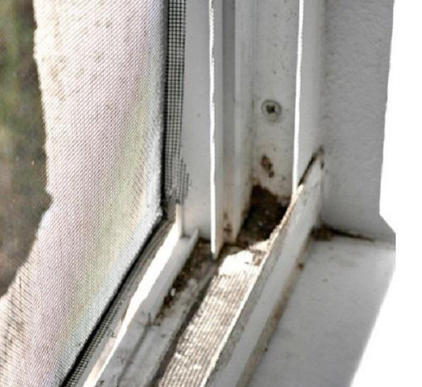 Научитесь быстро мыть окна с этим простым трюком!