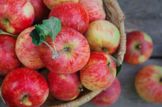 Медики шокировали: кому вообще нельзя есть яблоки. Новости Днепра