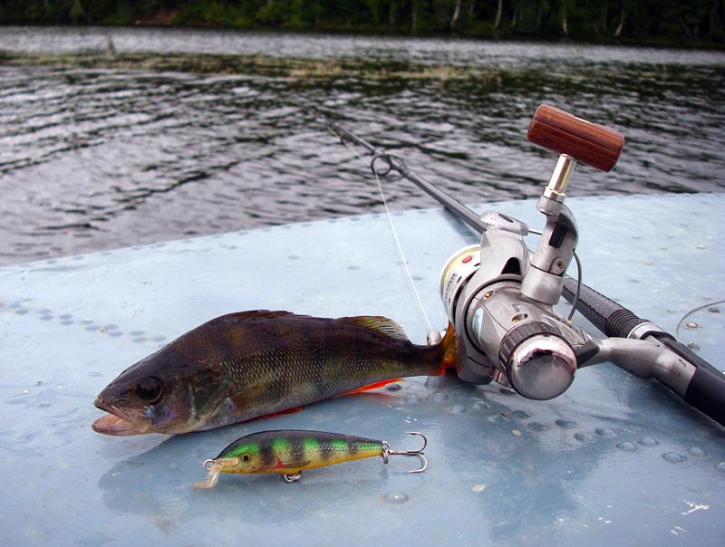 рыбалка на спиннинг в начале апреля