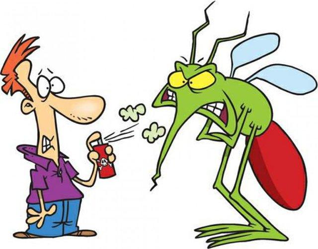 Как избавиться от комаров домашними средствами