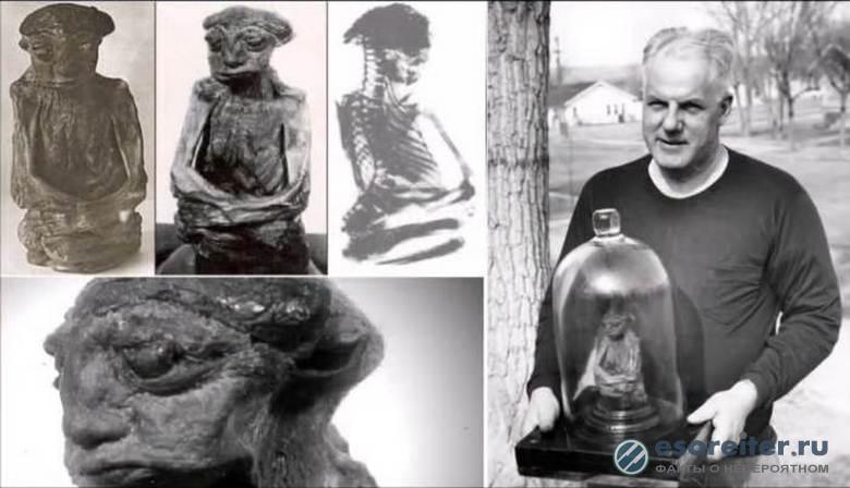 """Загадочная мумия """"лепрекона"""" затерялась в личных коллекциях"""