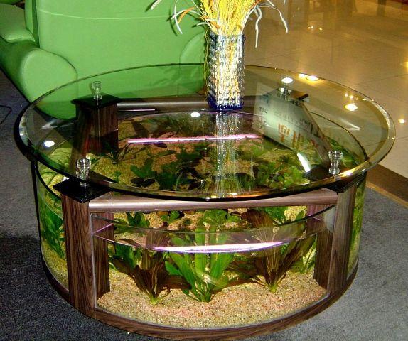 Вот это аквариум! Оригинально придумано